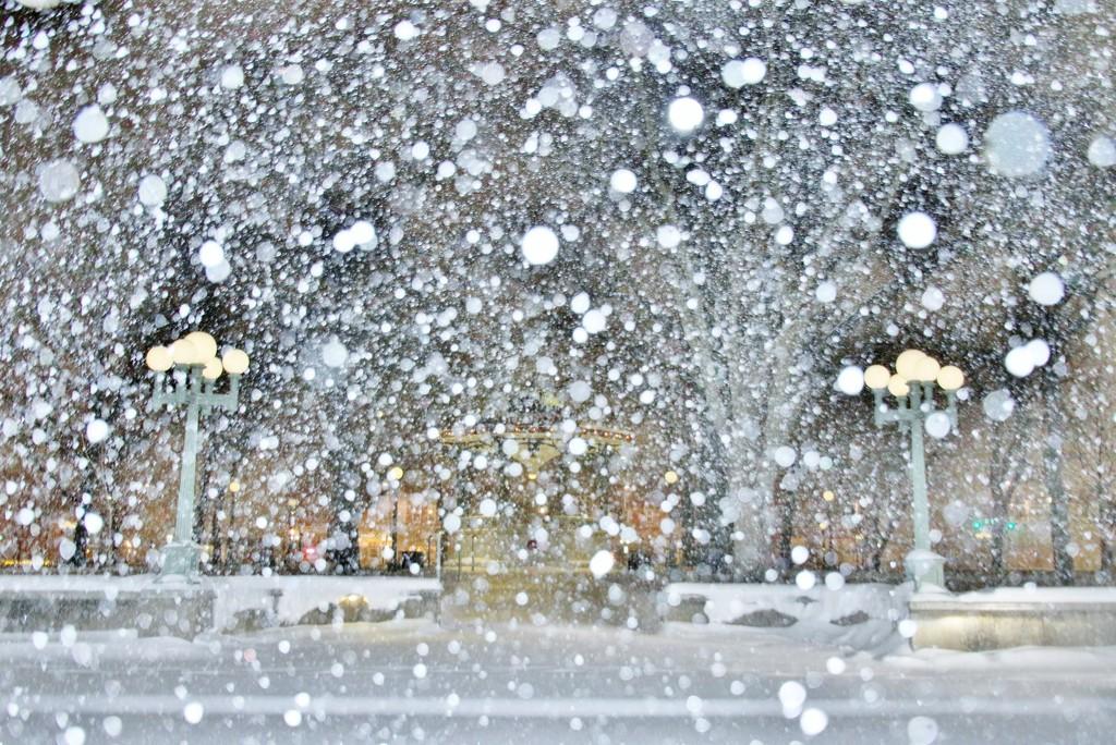 Blizzard by lynnz
