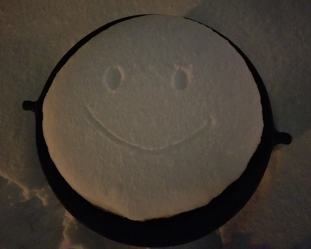 Smile, it's only snow. by scoobylou