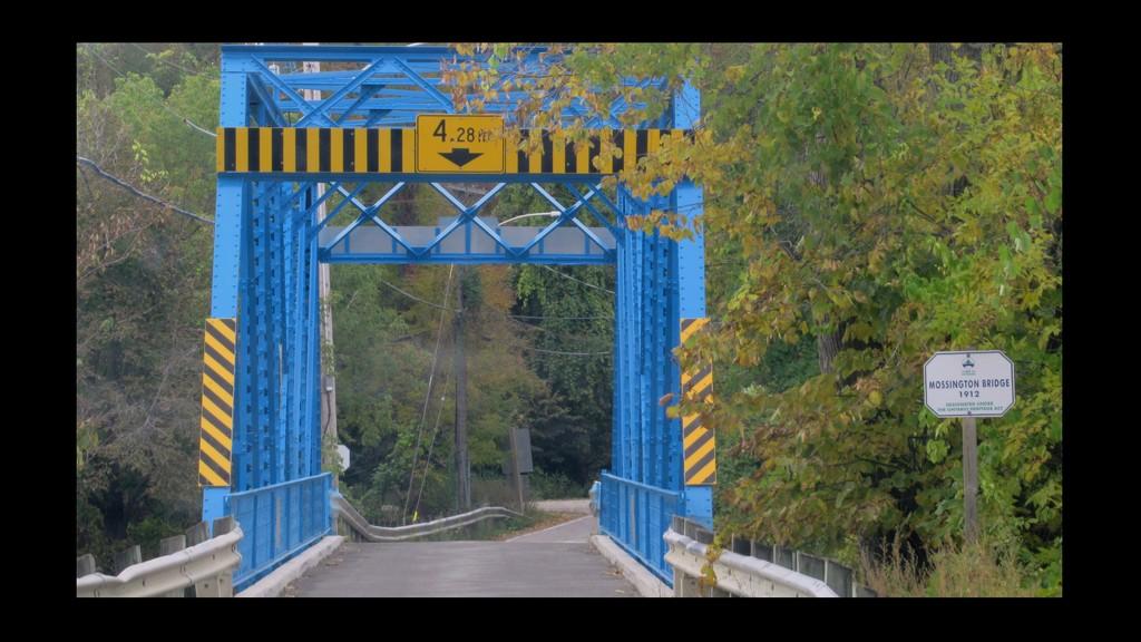 Mossington Bridge by bruni