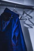 20th Jan 2019 - Famous blue raincoat