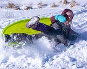 20th Jan 2019 - Fun in the snow
