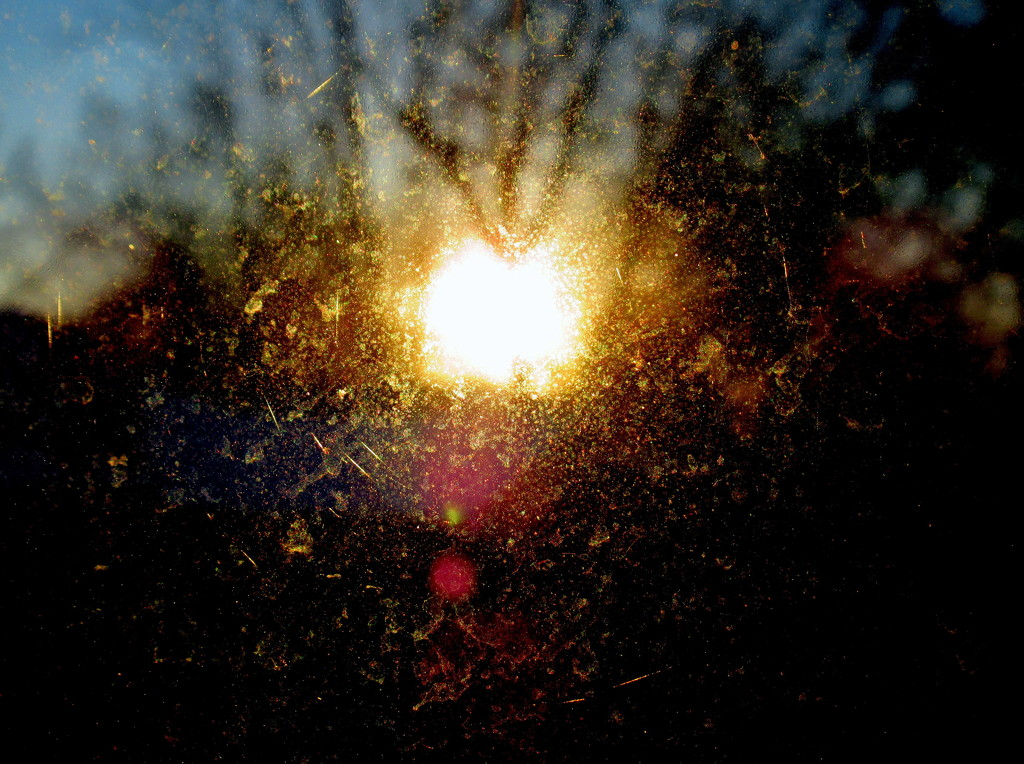 Sun burst by bruni