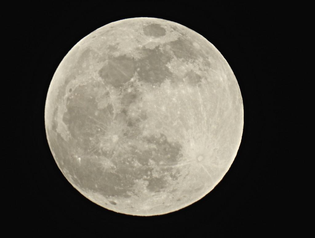 Eclipse Imminent by juliedduncan