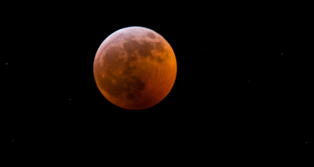 Super Blood Wolf Moon Lunar Eclipse! by rickster549