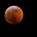 Super Blood Wolf Moon Lunar Eclipse!