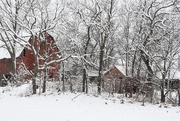 14th Jan 2019 - Two Red Barns in Snow
