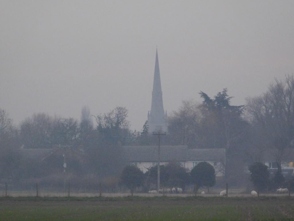 Misty moring across the fields by 365anne