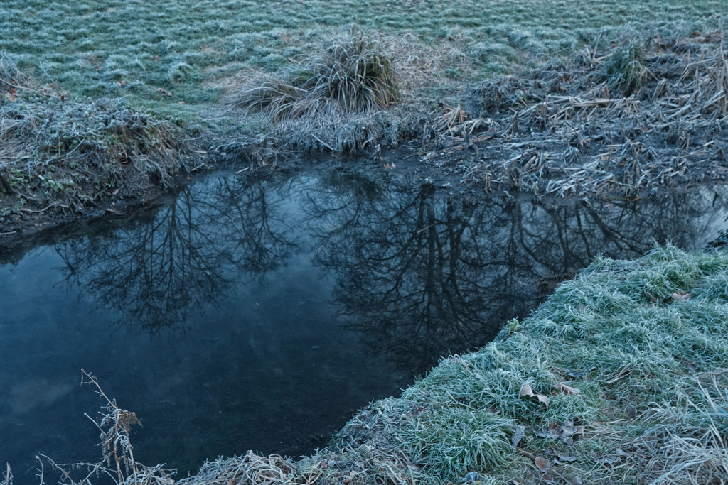 Winter reflections by rumpelstiltskin