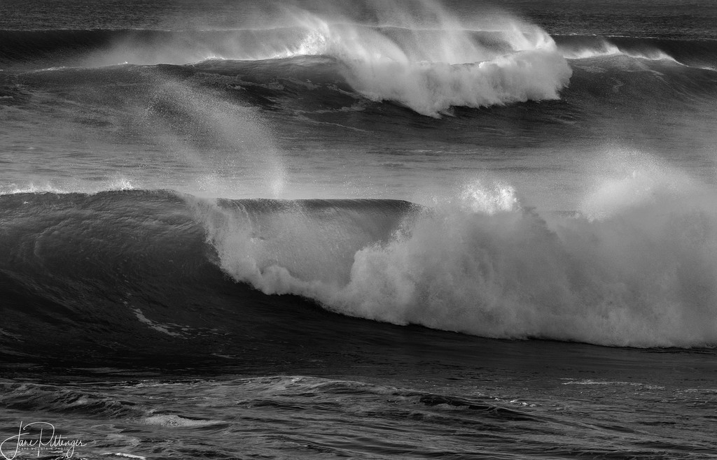 Surf for Black and White 2  by jgpittenger