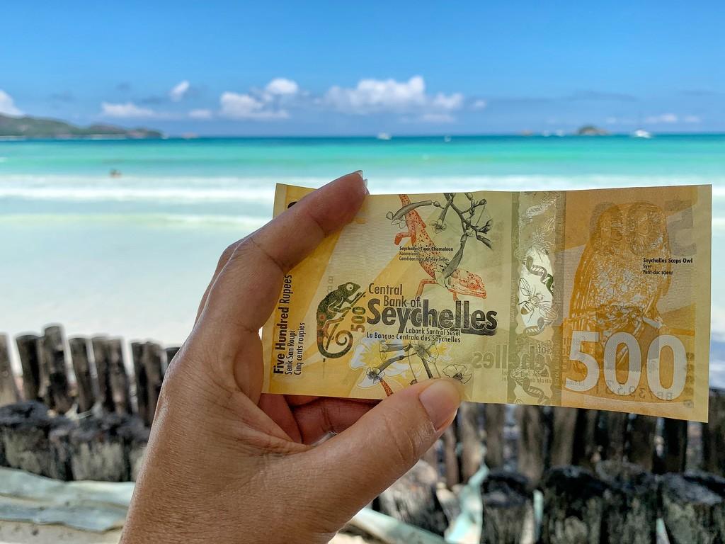 100 rupees.  by cocobella