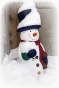 21st Jan 2019 - Smiling Snowman