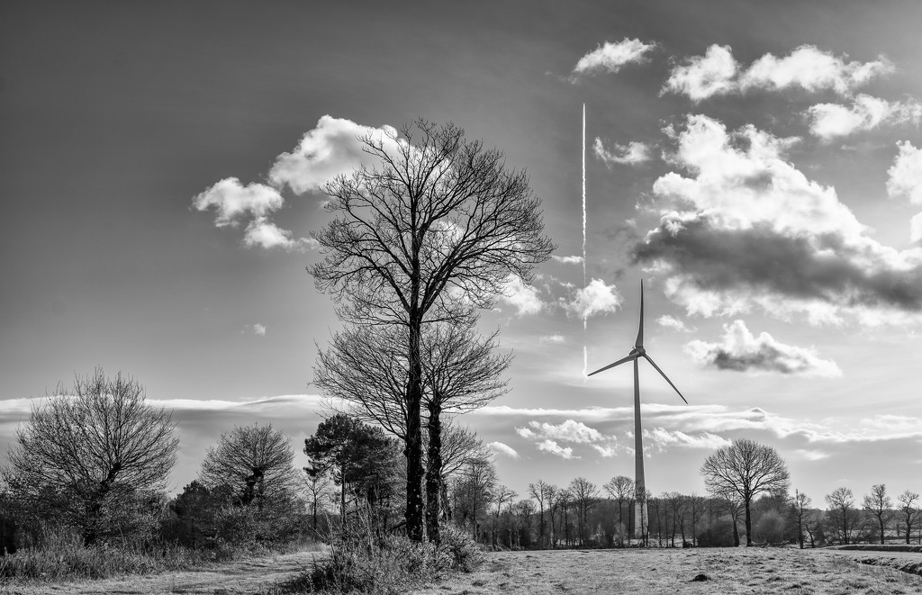 Trees, Turbine and Contrail... by vignouse