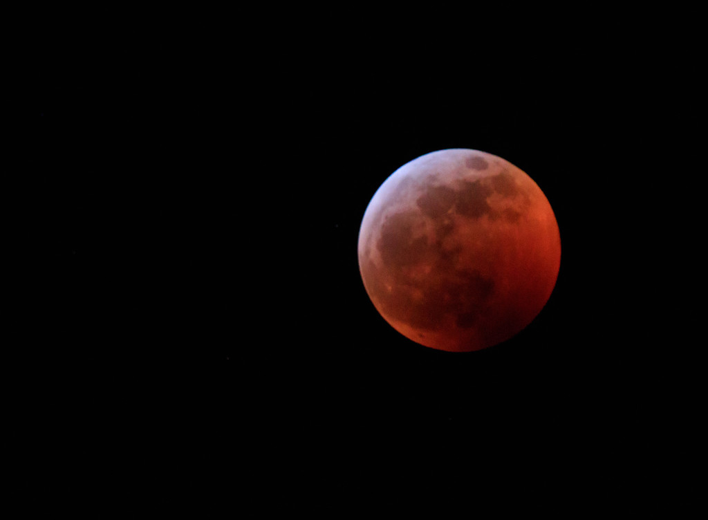 Super Blood Wolf Moon by aecasey
