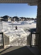 21st Jan 2019 - Major Snow