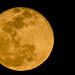 One Last Moon Shot!