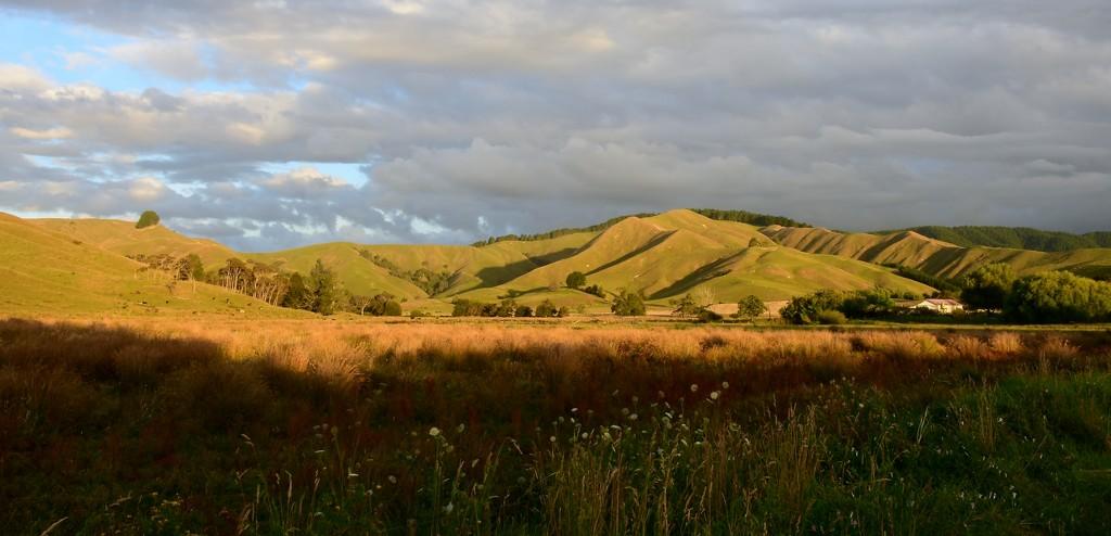 Evening Light on the Hills by nickspicsnz