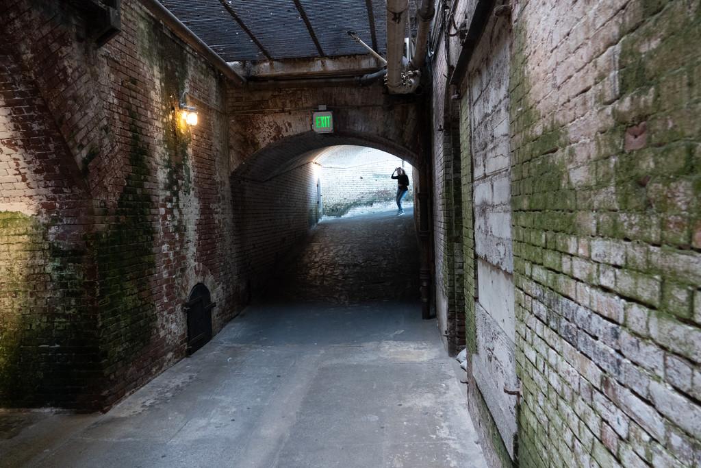 Tunnel by olivetreeann