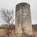 Tree and a silo