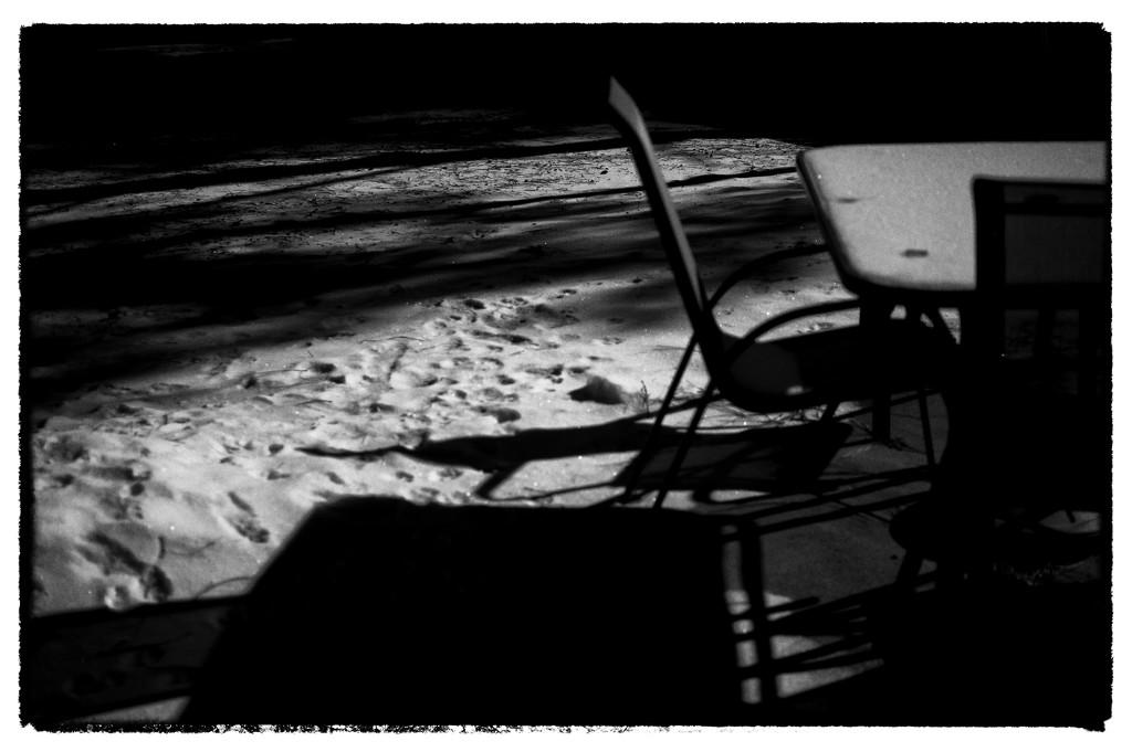 Dining by Snowy moonlight by joysabin