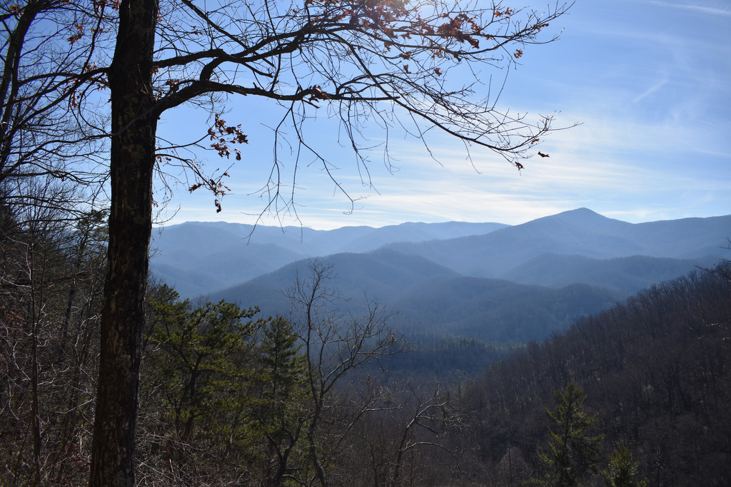 Great Smoky Mountains National Park by alophoto