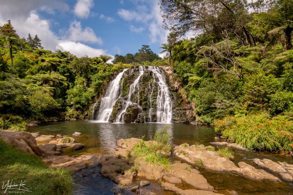 Owharoa Falls by yorkshirekiwi