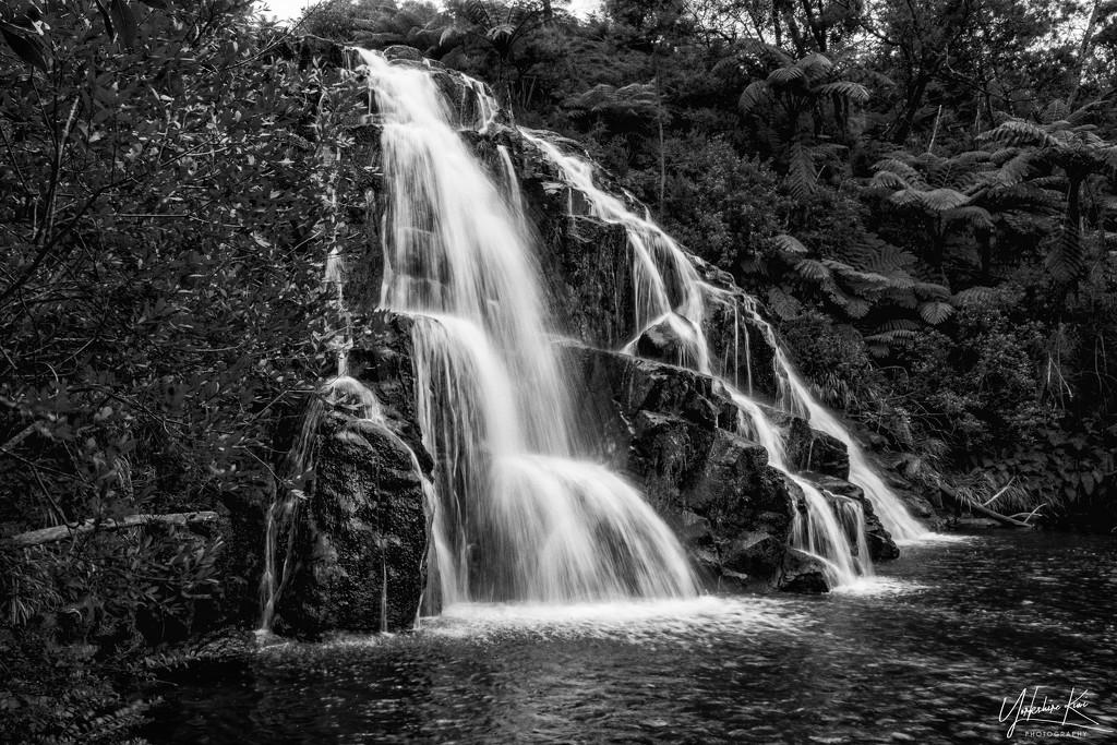 Owharoa Falls - B&W version by yorkshirekiwi