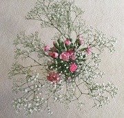 23rd Jan 2019 - Gypsophila and Carnations