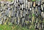 21st Jan 2019 - Welsh Walling Stone
