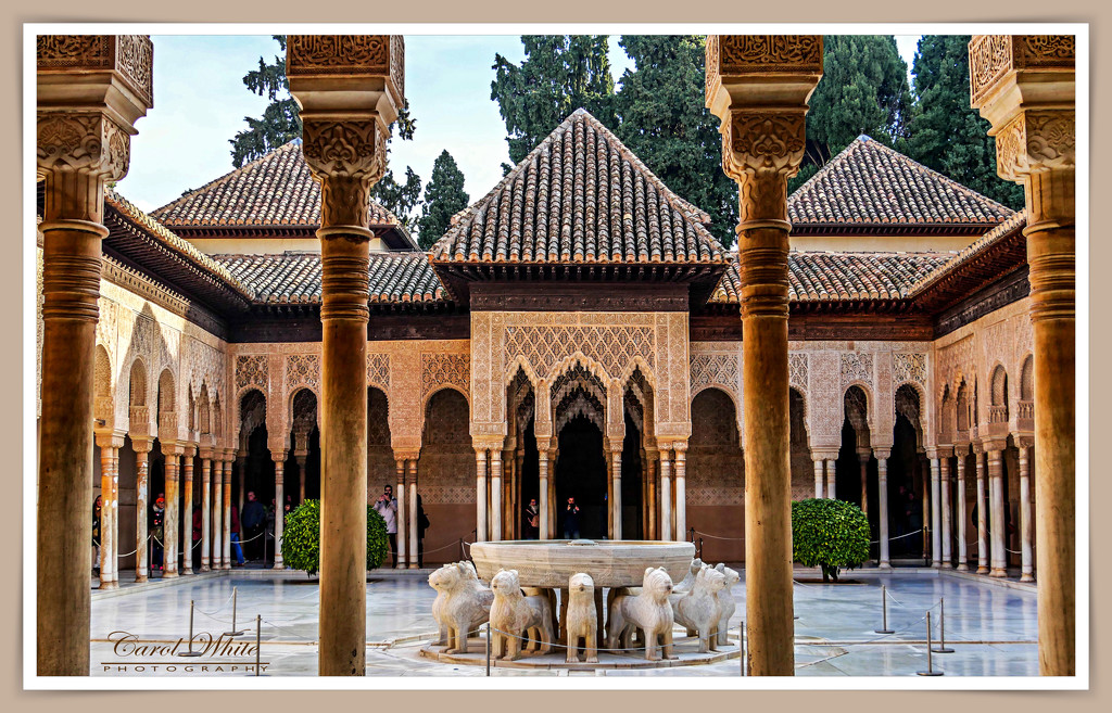 Palace Of The Lions,The Alhambra,Granada by carolmw