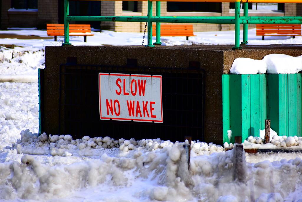 No Wake-No Way by brillomick