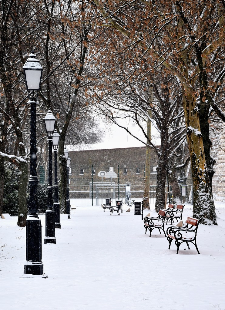 Winter in the park by kork