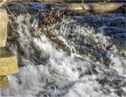 23rd Jan 2019 - Rapid Water