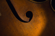 24th Jan 2019 - One more cello pic