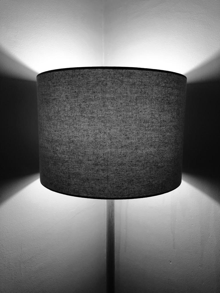 Lamp Light by cookingkaren