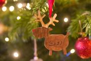 23rd Dec 2018 - A reindeer called Ruth!