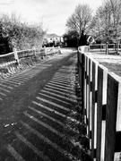23rd Jan 2019 - Fencepost shadows