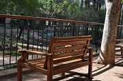 10th Feb 2010 - Bench in Phoenix