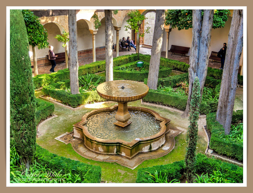 The Ladies Garden by carolmw