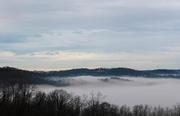 25th Jan 2019 - Fog 2