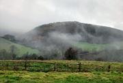 25th Jan 2019 - Mists slowly rise. Rain softly falls.