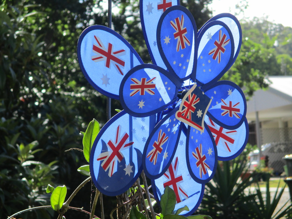 Windmill of relvolving Australian flags I use for Australian celebrations by 777margo