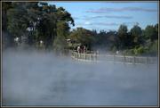 26th Jan 2019 - Rotorua