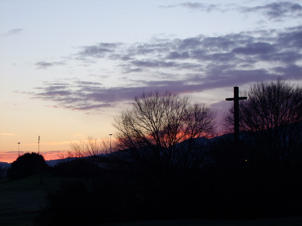 Goodmorning in purple by frappa77