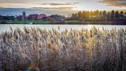 25th Jan 2019 - Lakeside Sundown