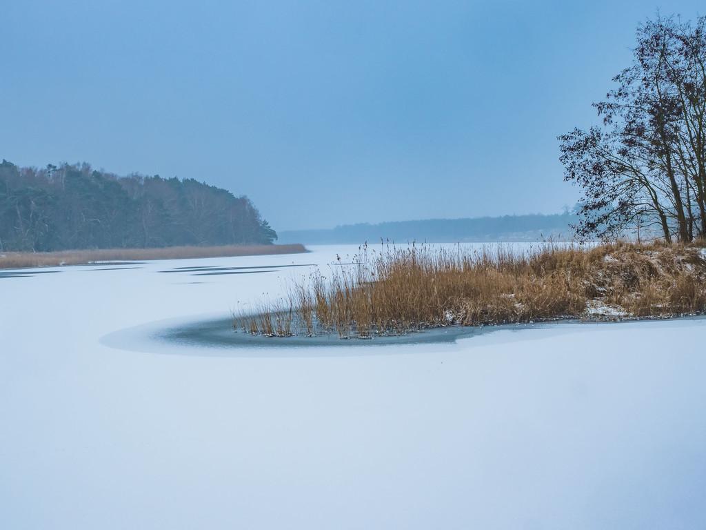 Fresh snow by haskar