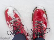 27th Jan 2019 - A walk in the snow