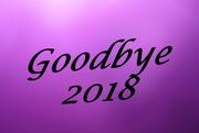 31st Dec 2018 - 2018 12 31 Goodbye 2018