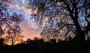 21st Jan 2019 - Sunrise in central London