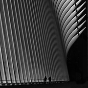 27th Jan 2019 - WTC