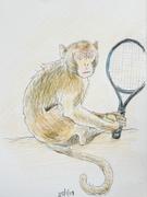 25th Jan 2019 - Monkey Tennis